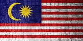 Malaysia Flag painted on luxury crocodile texture — Stock Photo