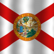 Waving FloridFlag — Stock Photo #38879433