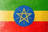 Ethiopië vlag geschilderd op leder texture — Stockfoto