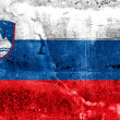 Slovenia Flag painted on grunge wall — Stock Photo #39359067