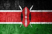 Kenya Flag painted on luxury crocodile texture — Stock Photo