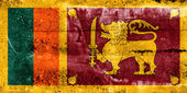 Sri Lanka Flag painted on grunge wall — Stockfoto