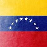 Venezuela Flag painted on leather texture — 图库照片