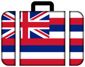 Suitcase with Hawaii Flag — Stock Photo