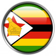 Stock Photo: Zimbabwe Flag glossy button