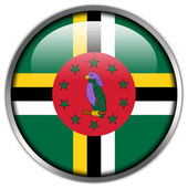 Dominica Flag glossy button — Stock Photo