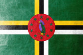 Dominica Flag painted on leather texture — Stock Photo