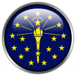 Indiana State Flag glossy button — Stock Photo