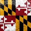 Stock Photo: Grunge Maryland State Flag