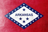 Arkansas State Flag painted on leather texture — Foto Stock