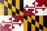 Maryland State Flag painted on leather texture — Stock Photo