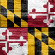 Stock Photo: Maryland State Flag painted on old wood plank texture