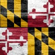 Maryland State Flag painted on old wood plank texture — Stock Photo