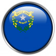 Nevada State Flag glossy button — Foto Stock