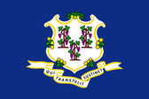 Connecticut State Flag — Stock Photo