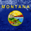Grunge MontanState Flag — Stock Photo #40218025