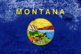 Grunge Montana State Flag — Stock Photo