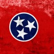 Stock Photo: Grunge Tennessee State Flag