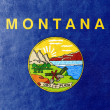 Montana State Flag painted on leather texture — Stock Photo