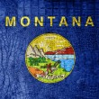 Montana State Flag painted on luxury crocodile texture — Stock Photo