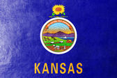 Kansas State Flag painted on leather texture — Stock Photo