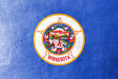 Minnesota State Flag painted on leather texture — Stock Photo