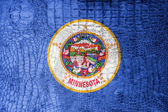 Minnesota State Flag painted on luxury crocodile texture — Foto de Stock
