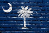 South Carolina State Flag painted on brick wall — Stock Photo