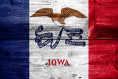 Iowa State Flag painted on old wood plank texture — Stock Photo