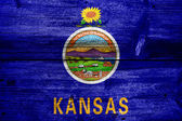 Kansas State Flag painted on old wood plank texture — Stock Photo
