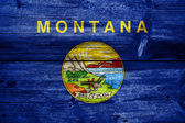 Montana State Flag painted on old wood plank texture — Stockfoto