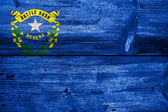 Nevada State Flag painted on old wood plank texture — Stock Photo