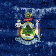 Maine State Flag painted on grunge wall — Stock Photo