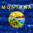 Montana State Flag painted on grunge wall — Stock Photo