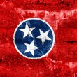 Stock Photo: Tennessee State Flag painted on grunge wall