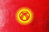 Kyrgyzstan Flag painted on leather texture — Stock Photo