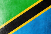 Tanzania Flag painted on leather texture — Stock Photo