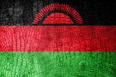 高級ワニ テクスチャに描かれたマラウイの国旗 — ストック写真