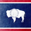 Wyoming State Flag painted on leather texture — Stock Photo