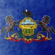 Pennsylvania State Flag painted on leather texture — Stock Photo