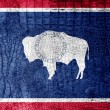 Wyoming State Flag painted on luxury crocodile texture — Stock Photo