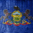 Pennsylvania State Flag painted on luxury crocodile texture — Stock Photo