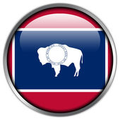 Wyoming State Flag glossy button — Stock Photo