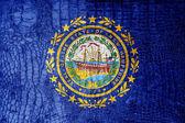 New Hampshire State Flag painted on luxury crocodile texture — Stock Photo