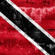 Stock Photo: Trinidad and Tobago Flag painted on grunge wall