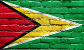 Guyana Flag painted on brick wall — Stock Photo