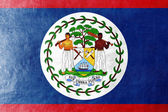 Belize Flag painted on leather texture — Stock Photo