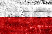 Poland Flag painted on grunge wall — ストック写真