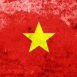 Grunge Vietnam Flag — Stock Photo