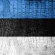 Stock Photo: EstoniFlag painted on luxury crocodile texture